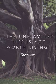 """The examined life is not worth living""  #philosophy #quotes #Socrates"