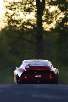 http://chicerman.com  myheartpumpspetrol:  250 GTO | Source  #cars