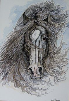 Gypsy Horse Original Pen Ink and Watercolour by JaneysArtStudio, £35.00
