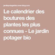 Le calendrier des boutures des plantes les plus connues - Le jardin potager bio