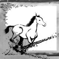 Horses Speed Art, Moose Art, Horses, Animals, Animales, Animaux, Horse, Animal Memes, Animal