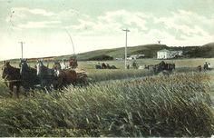 Brandon, Manitoba, 1907