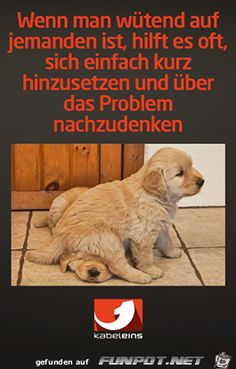 lustiges Bild 'Wenn man wuetend.png' von Floh. Eine von 14329 Dateien in der Kategorie 'witzige Bilder' auf FUNPOT.