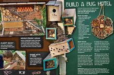 Build a bug hotel that will attract beneficial insects to your yard or garden
