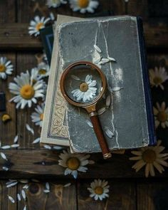 Book photography wallpaper life 47 Ideas for 2019