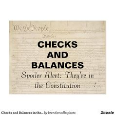 Checks and Balances in the Constitution Resistance