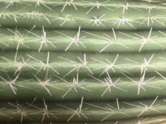 Kaktuskissen | MarinaMia