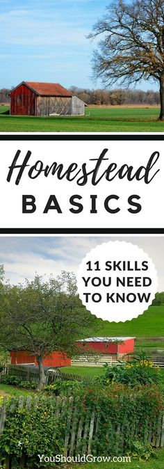 Ready to start your homesteading journey? Wondering how to expand your knowledge about homesteading? Learn the 11 essential homestead skills you need to know to be more self-sufficient. via @youshouldgrow