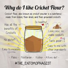 Time for an infographic! For cooking, I definitely prefer to use cricket flour vs whole crickets. Cricket flour could be added in so many recipes, without changing it's visual aspect, it just became much more nutritious. Whole crickets are OK for me like a snack. What about you? UPD: The cricket is described as Kosher in the Leviticus 11:20-23 New International Version (NIV). #the_entomophagist #foodofthefuture #entomophagy #entomophagist #eatingbugs #edib...