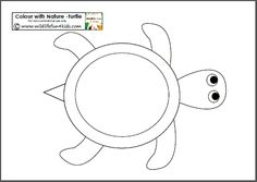 Colour with Nature - free Turtle template printable (plus other animals as well) Letter O, shapes, and animals!