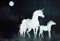 Unicorns' by valzart
