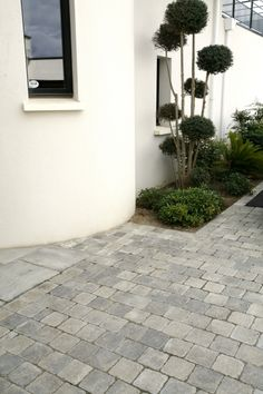 Pavé Newhedge Grey Plus Pavement, Front Yard Landscaping, Pathways, Outdoor Gardens, Rotterdam, New Homes, Construction, Exterior, Patio