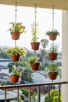 Awesome Hanging Plants On Apartment Balcony Garden Garden apartment Garden ideas Garden small Balcony Herb Gardens, Apartment Balcony Garden, Small Balcony Garden, Small Balcony Decor, Vertical Garden Diy, Apartment Balcony Decorating, Balcony Plants, House Plants Decor, Apartment Balconies
