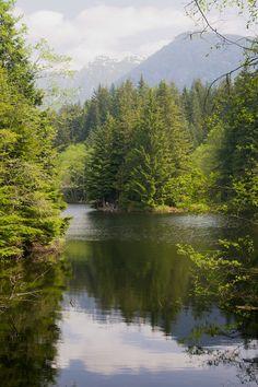 Rice Lake, North of Vancouver, British Columbia, Canada. O Canada, Canada Travel, West Coast Canada, Rice Lake, North Vancouver, British Columbia, Day Trips, Beautiful Places, Scenery