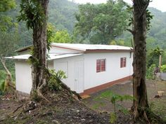 House For Sale in Devon Pen, St. Jamaica Country, Jamaica House, 10 Picture, Devon, Shed, Mary, Outdoor Structures, Homes, Plants