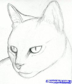 Realistic Drawings how to draw a cat head, draw a realistic cat step 3 Cat Sketch, Sketch Art, Drawing Sketches, Drawing Guide, Drawing Ideas, Sketching, Draw Realistic, Cat Drawing Tutorial, Easy Cat Drawing