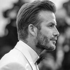David haircut men beard