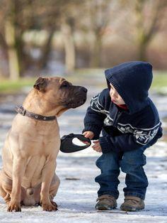 Dieser Junge findet mit seinen jungen vier Jahren schon unglaublich rührende Worte, um sich weise von seinem Hund zu verabschieden.