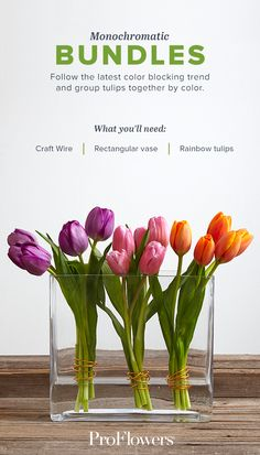 Find fresh ideas for styling your spring tulips. Watch our video and learn more!