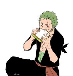 Roronoa Zoro Pirate Hunter One Piece He is the rice guy as far as i know but will eat anything sanji makes