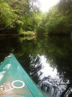 kayaking the pine barrens, NJ