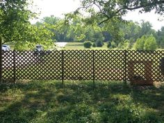 Here is a view of the lattice fence that has no plants on it. You could add another lattice panel on the back, trim this out, and make it look more polished.