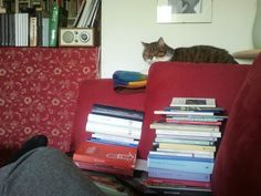 books, parfi
