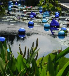 glass floats in pond | chihuly at bellewood gardens