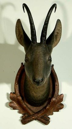 antique black forest carved wood chamois head