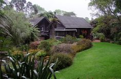 A most gorgeous native garden: Te Kainga Marire, New Plymouth, NZ Outdoor Rooms, Outdoor Gardens, Outdoor Ideas, Plymouth, Hampton Garden, Manor Garden, New Zealand Landscape, Landscape Design Plans, Coastal Gardens
