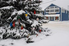 Snowy Kennebunkport, Maine, during Christmas. Buoys on tree.