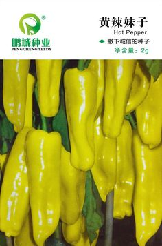 The original packaging Vegetable seeds Yellow hot girl About 200 grain yellow skin pepper 2 grams/bag