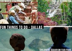 Fun Things To Do - Dallas #heycaryl #travel