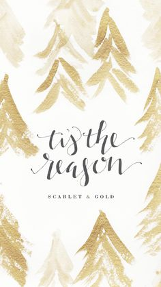 'Tis the reason: faith—Scarlet & Gold