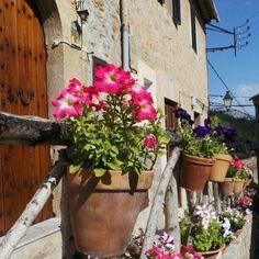 Miten paljon kukkia...ja määrä vain kasvaa mitä lähemmäs Santa Catalinan taloa päästään Valldemossassa. #aurinkomatkaaja #mallorca