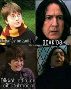 Harry Potter Anime, Harry Potter Jokes, Harry Potter Cast, Harry Potter World, Harry Hermione Ron, Funny Share, Funny Moments, Really Funny, Wtf Funny