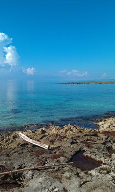 the view from my beach chair. costa maya, mexico.