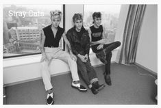 '''.Stray Cats interviewed by Music Life magazine at a hotel room, September 1st, 1981, Tokyo, Japan. Brian Setzer, Lee Rocker, Slim Jim Phantom. (Photo by Koh Hasebe/Shinko Music/Getty Images)...''' https://www.gettyimages.fr/license/905913850 https://www.gettyimages.fr/license/905913844 https://www.gettyimages.fr/license/905913842 https://www.gettyimages.fr/license/905913826 https://www.gettyimages.fr/license/905913838