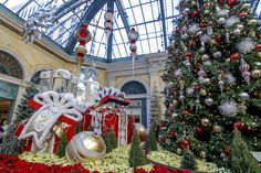 We have your winter in Las Vegas plans covered. Wander through the wonders of winter at Bellagio's Conservatory & Botanical Garden's 2018 holiday installation. Las Vegas In December, Bellagio Conservatory, Vegas Tattoo, Stuff To Do, Things To Do, Knight Games, Vegas Golden Knights, Garden S, Botanical Gardens
