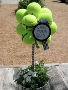 How to make a Tennis Ball Topiary! Great for puppy party or that fund raiser for the New Dog Park.--- and great doggie gift Grooming Shop, Dog Grooming, Tennis Ball Crafts, Tennis Decorations, Tennis Party, Tennis Cake, Puppy Party, Dog Boutique, Dog Crafts