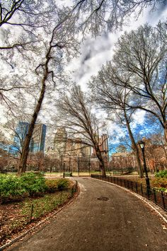 Path Through Central Park Hdr.  Artist: HDRExposed - Dave DiCello Photography This is a path in Central Park in New York City. The clouds were just breaking for the day and the city provided a great background through the trees over the baseball field.