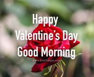 Valentines Day Pictures, Photos, and Images for Facebook, Tumblr, Pinterest, and Twitter Happy Valentines Day Rose, Valentines Day Quotes For Friends, Happy Valentines Day Pictures, Valentines Gif, I Love You Pictures, Heaven Pictures, Gif Pictures, Friend Pictures, Prayer Pictures