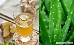 Gừng và nha đam đều là hai thành phần tự nhiên nổi tiếng trong y học. Bản thân hai thứ này đều mang trong mình những tinh chất diệu kỳ, đem lại lợi ích tốt cho sức khỏe con người. Lợi ích của trà gừng nha đam Gừng và nha đam đều là hai thành phần tự nhiên nổi tiếng trong y học. Bản thân hai thứ...
