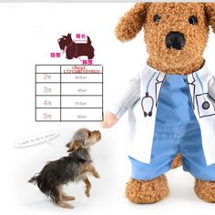 2016 Hot Funny Halloween Pet Cat Dog Doctor Costume Cosplay 4Sizes Dog Puppy Party Jacket