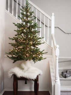 Oscar Bravo Home Trying Out An Christmas Tree Happy New Year Pretty Christmas Trees, Tabletop Christmas Tree, Mini Christmas Tree, Christmas Tree Themes, Christmas Table Decorations, Christmas Home, White Christmas, Decorating For Christmas, Different Christmas Trees