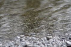 A shallow flooding in our driveway, love the ripples