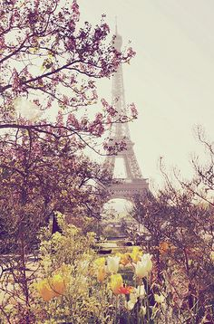will live in Paris when i grow up. I will see the Eiffel Tower every day. i will be able to take this picture myself someday in the future! i love paris and the eiffel tower! Paris In Spring, Oh Paris, Springtime In Paris, I Love Paris, Paris City, Oh The Places You'll Go, Places To Travel, Segway Tour, Beautiful World