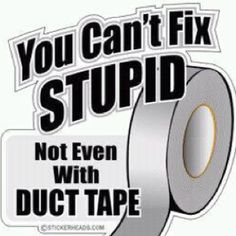 Too bad because there's a lot of stupid to fix...
