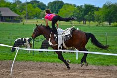 Lindsay George Byers doing the one foot stand on Hippie. English Horses, Trick Riding, Horse Camp, Horse Tips, Horse Stuff, Vaulting, Horse Riding, Rodeo, Tack