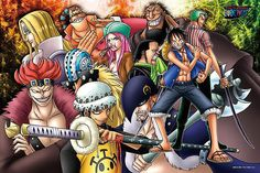 ONE PIECE ルーキー